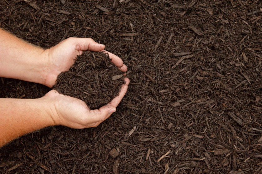 Fall Is A Great Time To Mulch Very Good Tree Service